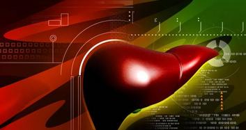 小分子肽—保肝护肝,肝脏的疗养师!